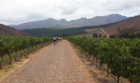 7 Days, Cape Town & The Winelands
