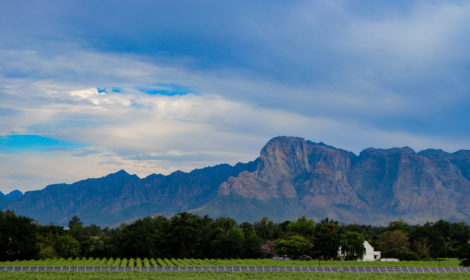 Franschhoek, Full-Day, Simonsberg Sip & Cycle