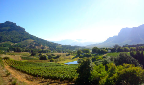 3 Days, Best Of The Cape Winelands