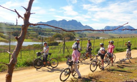 Stellenbosch, Half-Day, Devon Valley Cycle
