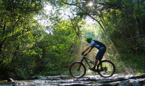 Durban, Half-Day, Game Park Cycle