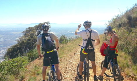 Cape Town, Half-Day, Table Mt. Biking