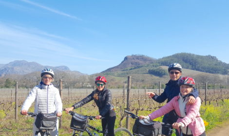 Franschhoek, Half-Day, Bike & Wine