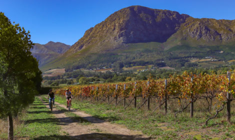 Franschhoek, Short Cycle, Village Tour