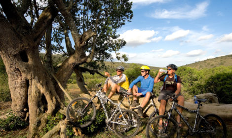 11 Day, Cycle Safari – South Africa