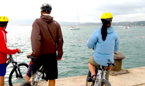 Knysna, Half Day Cycle, Village, The Heads & Lagoon