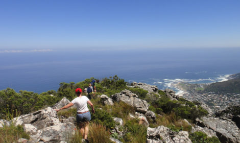 Cape Point, Half Day, Bike & Hike