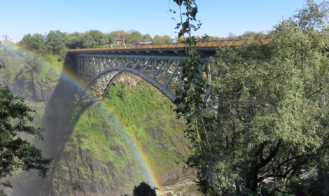 Victoria Falls, Cycle & Rainforest Tour